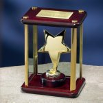 Brass Star Enclosed in Glass Box Executive Gift Awards
